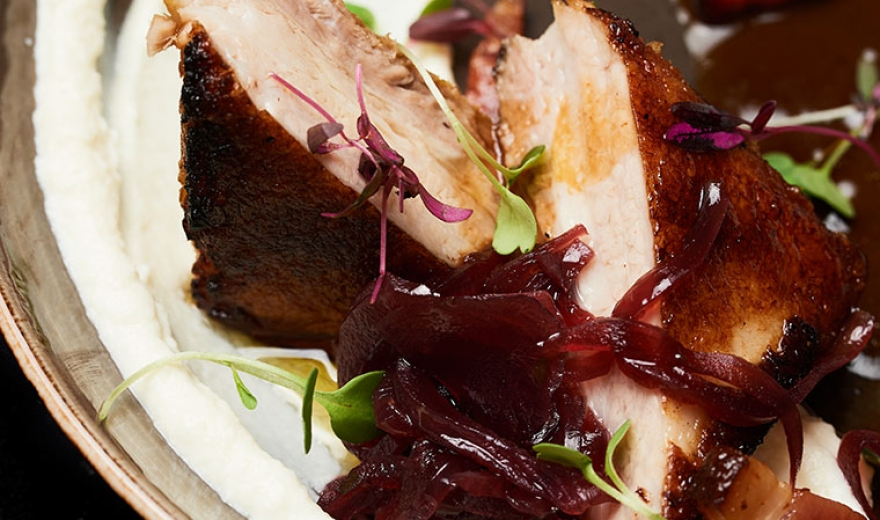 closeup of glazed pork dish with pea shoots and pickled vegetable garnish