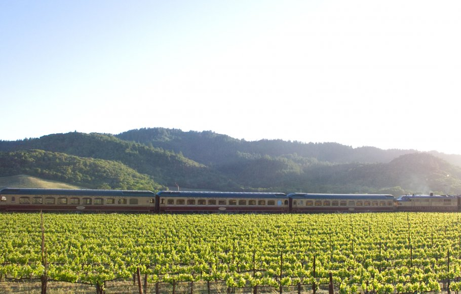 The Napa Valley Wine Train rolls past a green vineyard on a sunny day.