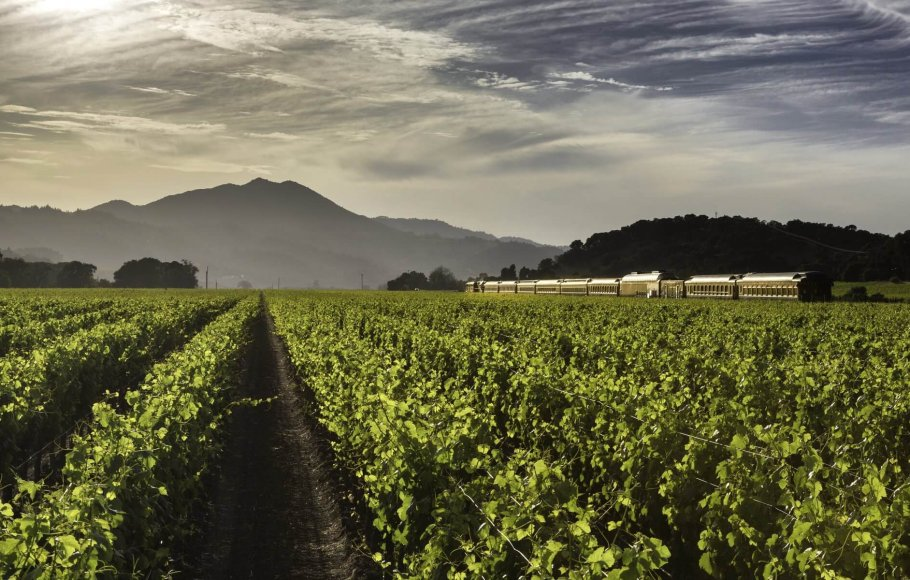Vast, lush green vineyard in summer with mountains in background and Napa Valley Wine Train along the side